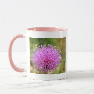 Texas Thistle (Cirsium texanum) Mug