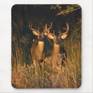 Texas Whitetails Mouse Pad