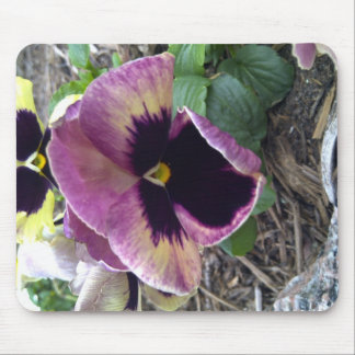 Texas wild purple flower mouse pad