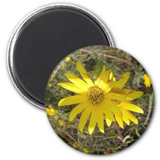 Texas Wildflower 2 Inch Round Magnet