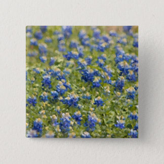 Texas Wildflowers Bluebonnets Digital Painting Pinback Button
