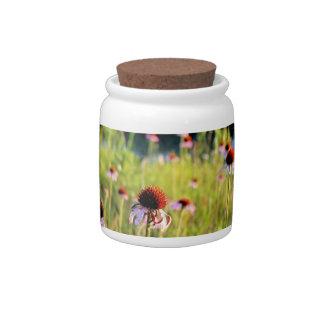Texas Wildflowers - Coneflower Candy Jar