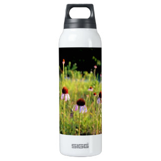 Texas Wildflowers - Coneflowers - 16 Oz Insulated SIGG Thermos Water Bottle