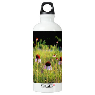 Texas Wildflowers - Coneflowers - SIGG Traveler 0.6L Water Bottle