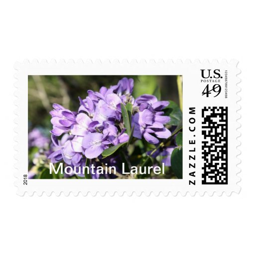 Texas Wildflowers Postage Stamps