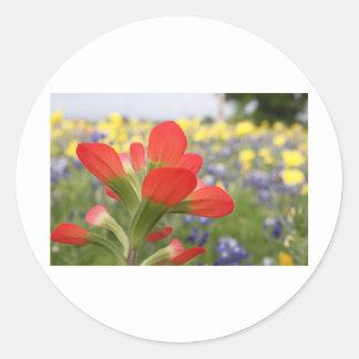 Texas Wildflowers Stickers