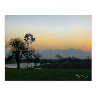 TEXAS windmill at sunset Postcard