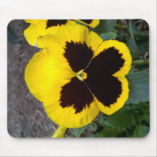 Texas yellow wild flower mouse pad