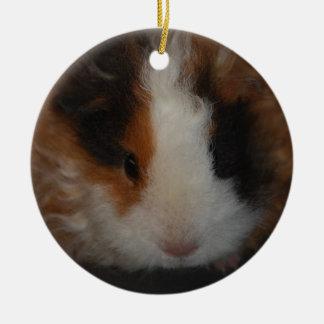 Texel Guinea Pig ornament