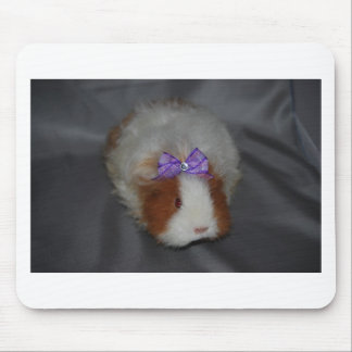 Texel Guinea Pig with bow Mouse Pad