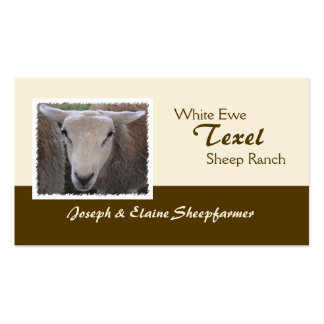 Texel Sheep business card