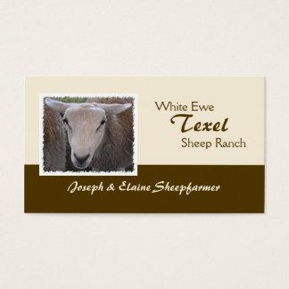 Texel Sheep business card