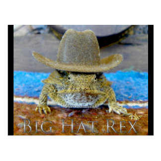Texe's Cousin...bIg hAt rEx Postcards