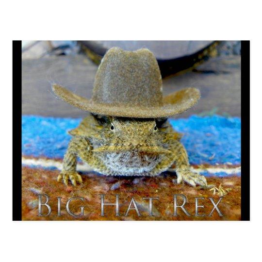Texe's Cousin...bIg hAt rEx Postcard