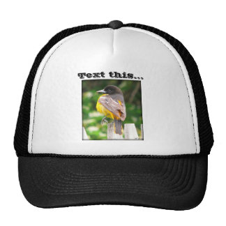 Text this... trucker hat