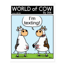 Texting Cow Postcard