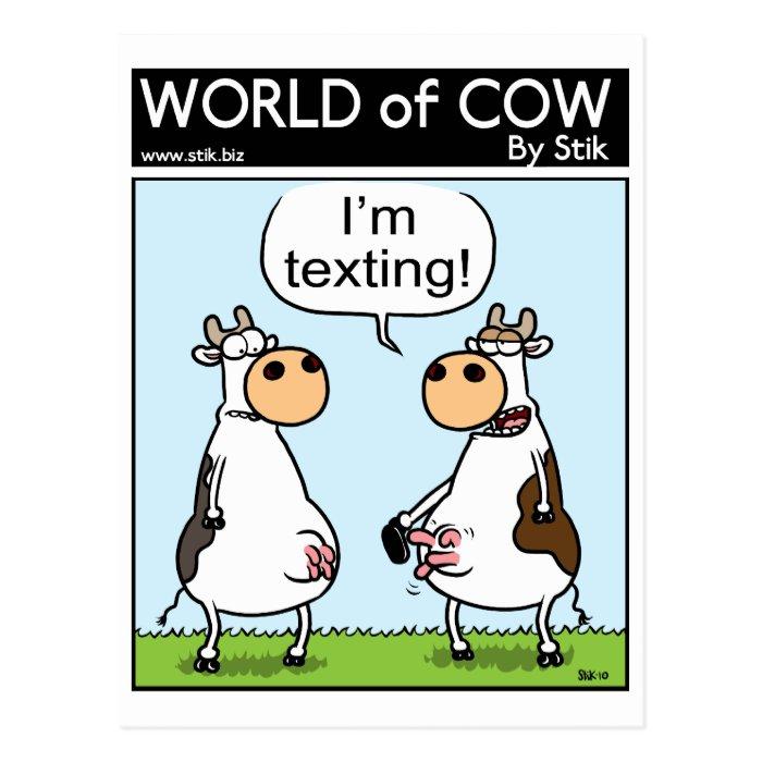 Texting Cow Postcard