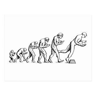 Texting Evolution Postcard