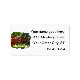 Texto de ayuda del cangrejo y de ermitaño, diseño  etiquetas de dirección