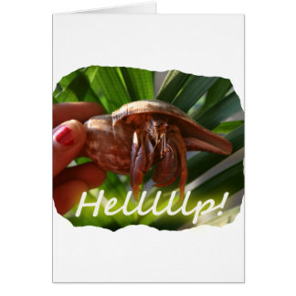 Texto de ayuda del cangrejo y de ermitaño, diseño tarjeta pequeña