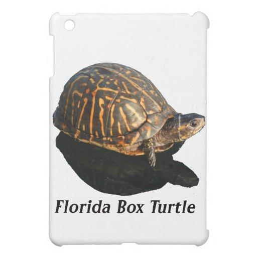 Texto de la fotografía w de la tortuga de caja de