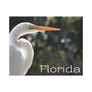 Texto retroiluminado de la Florida del Egret blanc Impresiones En Lienzo Estiradas