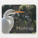 Texto retroiluminado de la Florida del Egret blanc Tapetes De Ratón