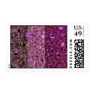 Textura arcillosa inspiradora de la pizarra timbre postal