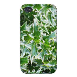 Textura claveteada de las hojas - verde iPhone 4/4S fundas