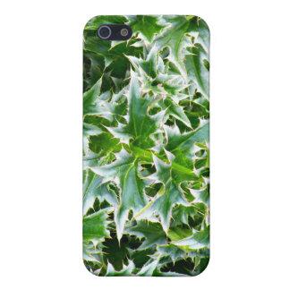 Textura claveteada de las hojas - verde iPhone 5 fundas