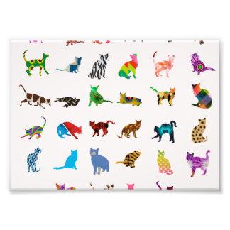 Textura con los gatos coloridos fotografías