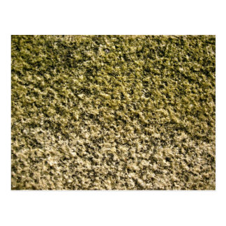 Textura cubierta musgo de la roca postales