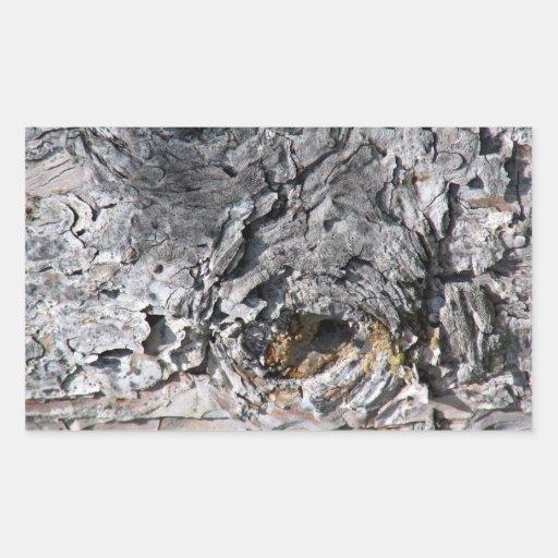 Textura de la corteza con el agujero pegatina rectangular