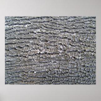 Textura de la corteza de árbol horizontal posters