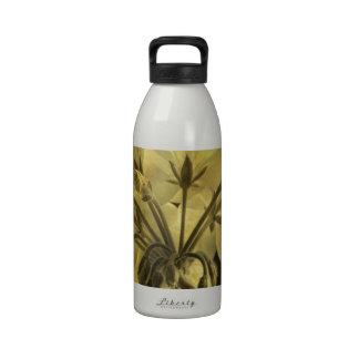 Textura de la flor del geranio botella de beber