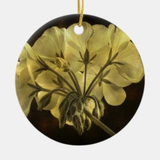 Textura de la flor del geranio adornos