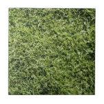 Textura de la hierba azulejo cerámica