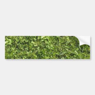 Textura de la hierba salvaje y del trébol etiqueta de parachoque