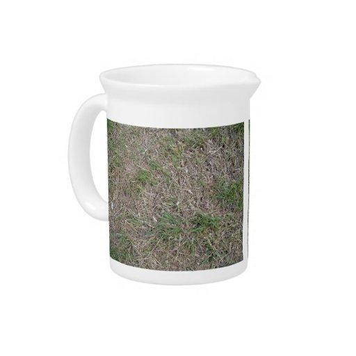 Textura de la hierba secada jarras de beber