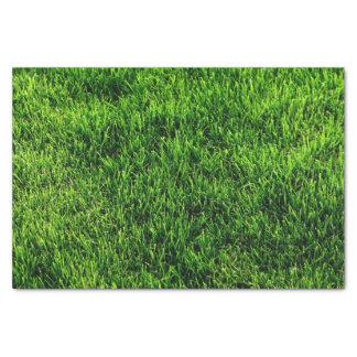 Textura de la hierba verde de un campo de fútbol papel de seda pequeño