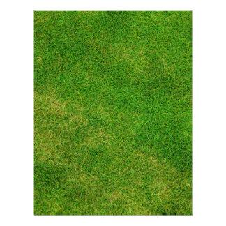 Textura de la hierba verde tarjetón