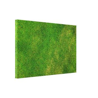Textura de la hierba verde impresión en lienzo