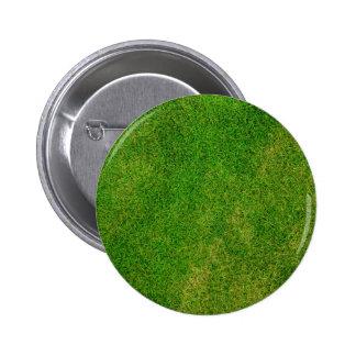 Textura de la hierba verde pin