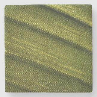 Textura de la hoja del plátano posavasos de piedra