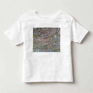Textura de la pared de la montaña con los liquenes t-shirt