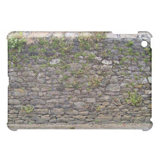 Textura de la pared de piedra y de plantas verdes