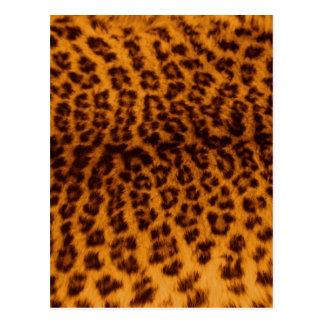 Textura de la piel del leopardo tarjeta postal
