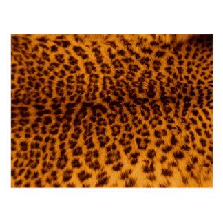 Textura de la piel del leopardo postal