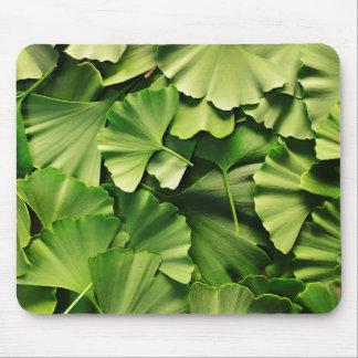textura de la planta de la naturaleza de la hoja alfombrillas de ratón