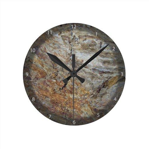 Textura de la roca con las plantas relojes
